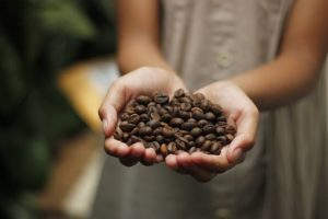 Cappuccino Fit - मूल, फार्मेसी में, भारत