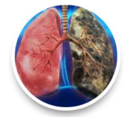 Detox Lungs - रचना, के फायदे, सामग्री
