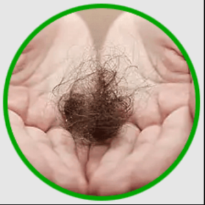 Herbal hair Oil - प्राइस इन इंडिया, फार्मेसी, amazon, जहां खरीदने के लिए
