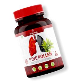 Pine Pollen - राय, समीक्षा, मंच, टिप्पणियां